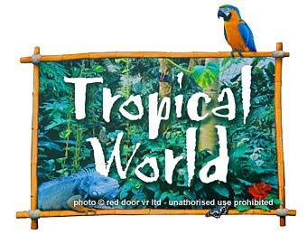 tropical_logo_240-red-door-leeds